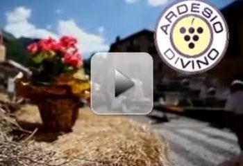 Ardesio-Divino-2013-Spot-Pubblicitario