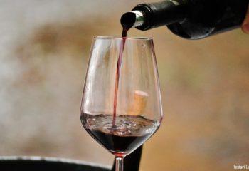 viviardesio Ardesio-DiVino-2016-Mostra-Mercato-Enogastronomica-Val-Seriana-Luca-Festari-Avantgarde-Wine-degustazione-Vino